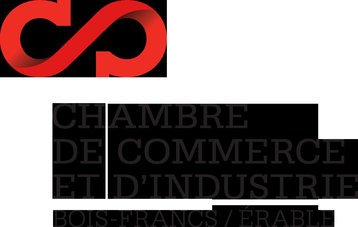 CCIBFE Logo
